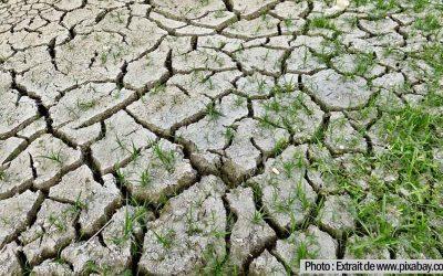 Plan Hulot – Sécheresse : La politique de l'eau doit être réformée
