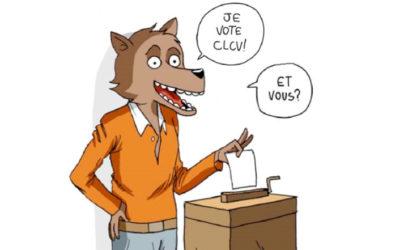 Election des représentants locataires au CA de Paris Habitat.