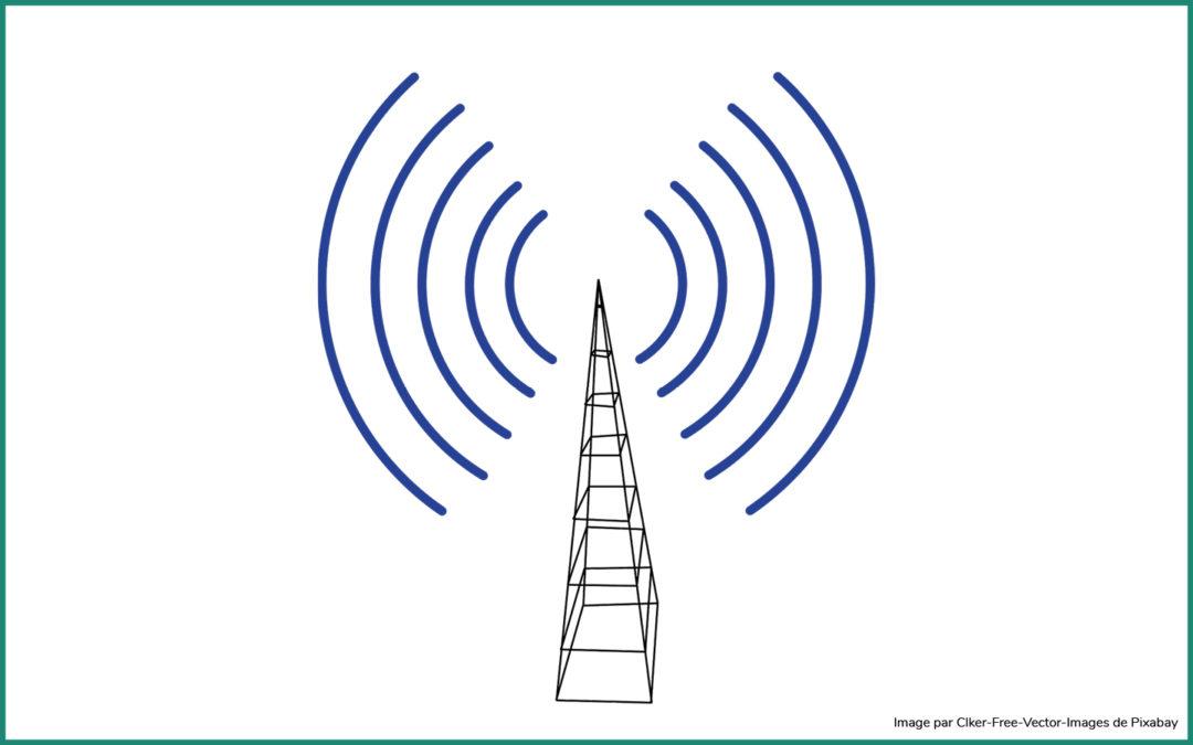 COMMISSION DE TELEPHONIE MOBILE (CCTM) 2 novembre 2020